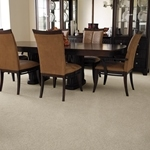 Bonterra Cut Pile Carpet by Dixie Home