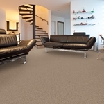Bryan Park Cut and Loop Carpet by Dixie Home