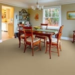 Millport Patterned Carpet by Dixie Home