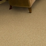 Heatherfield Plush Carpet by Dixie Home