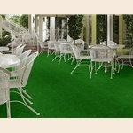 Arbor View Indoor Outdoor Carpet