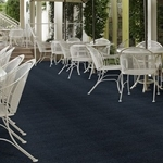 Softscape II Indoor/Outdoor Carpet -
