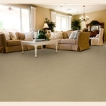 Authentic Living Cut and Loop Carpet