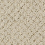 Brant Point Cut and Loop Carpet by Dixie Home