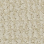Boston Common Cut and Loop Carpet by Dixie Home