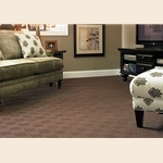 Classic Estate Patterned Carpet by Mohawk