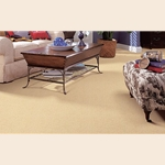 mohawk skillful intent carpet