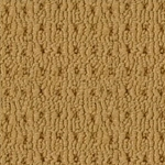 Boxweave Paterned Carpet by Beaulieu