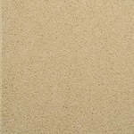 Caress Cut Pile Carpet by Dixie Home