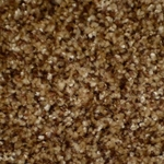 Brilliance Cut Pile Carpet by Dixie Home