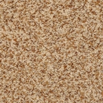 Dantry Cut Pile Carpet by Dixie Home