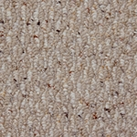 Echo Textured Berber Carpet