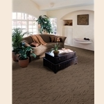 Artessa Cut and Loop Carpet