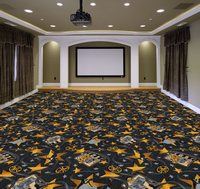 Entertainment Theme Carpet