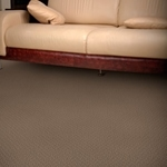 Alcova Cut and Loop Carpet by Dixie Home