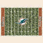 Miami Dolphins NFL Team Home Field