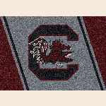 South Carolina College Team Spirit