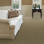 Boho Tip Sheared Loop Wool Carpet