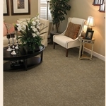 Azure Loop/Loop/Cut Carpet by Dixie Home