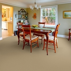 Millport Cut and Loop Carpet by Dixie Home