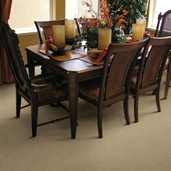 Spinnaker Cut and Uncut Carpet by Dixie Home