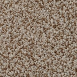 heartu0027s content cut carpet by dixie home - Stainmaster Carpet