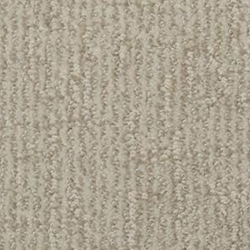 Cape Cod Cut And Loop Carpet Stainmaster Carpet