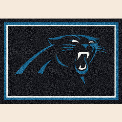 Carolina Panthers NFL Team Spirit