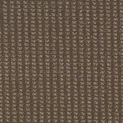 Modern Traditions Patterned Carpet
