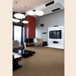 Benovia Cut and Loop Carpet by Dixie Home
