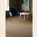 Any Where Shaw Loop Graphic Carpet