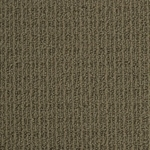 Canoe Ridge Loop Carpet by Dixie Home
