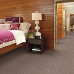 Best of Class Cut Pile Carpet
