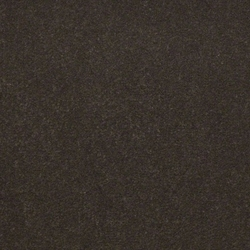 Emphatic Ii Nylon Cut Pile Commercial Carpet Capri