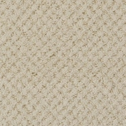 Brant Point Cut And Loop Carpet Stainmaster Carpet