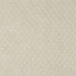 Pace Setter Patterned Carpet Discount Carpet