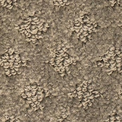 Design Inspiration Patterned Mohawk Smartstrand Carpet